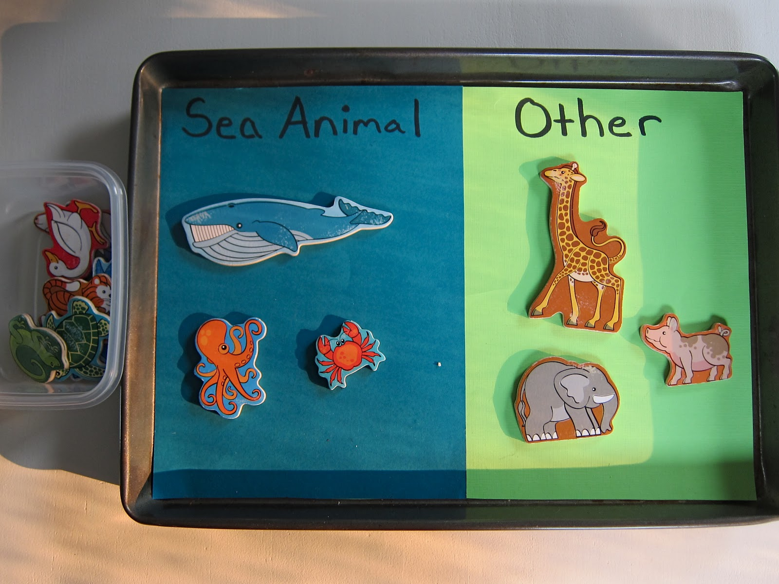Unit Syllabus Oceans Sea Life