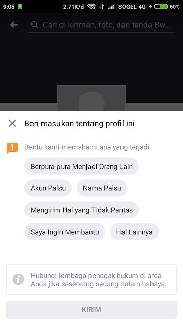 Report Facebook Profile 2