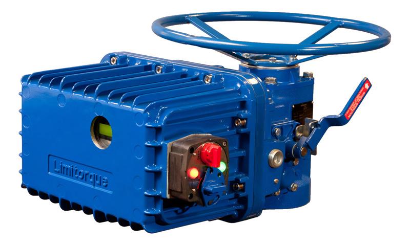 Flowserve Limitorque Actuators General Safety Precautions and
