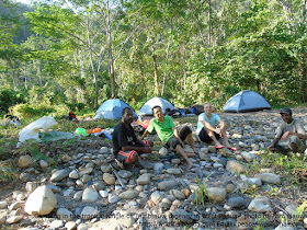 Birdwatching, hiking and camping in West Papua's forest