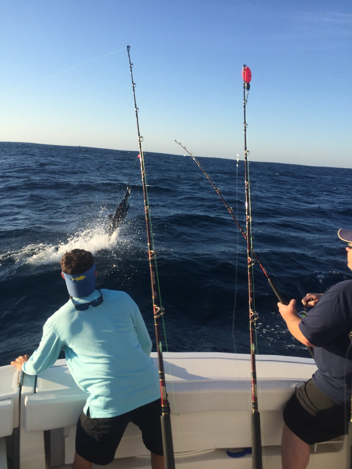 It aint holy water south florida fishing frenzy for South florida fishing