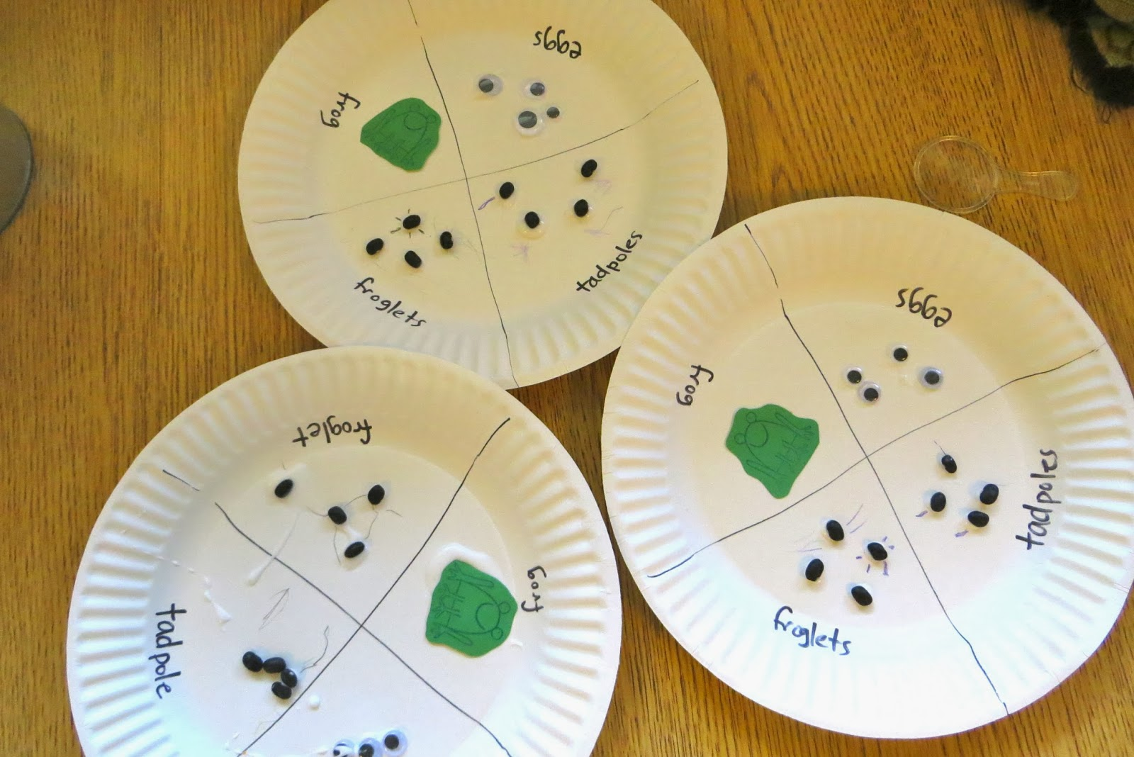 Tadpole Crafts For Preschool