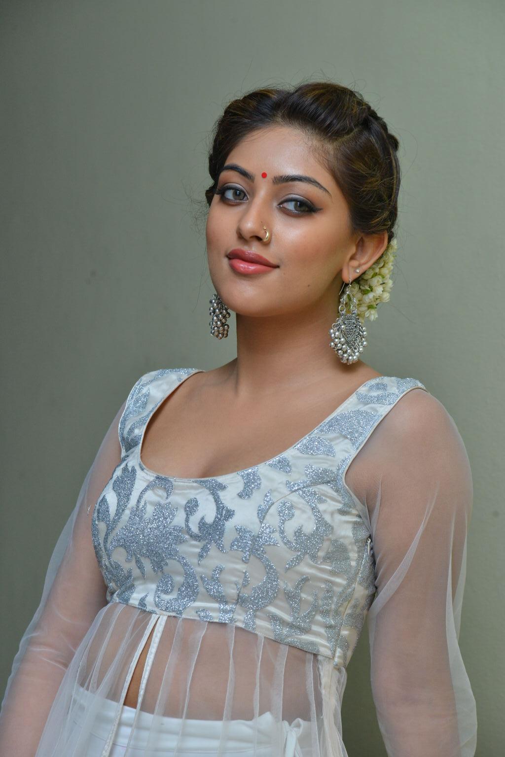 actress anu emmanuel latest stills   indian actresses