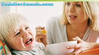 Toddler Meal Problems and Solutions