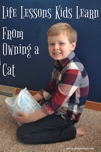 Life Lessons Kids Learn From Owning a Cat, lessons that pets teach kids, life lessons that pets teach children, parenting with pets, Fresh Step cat litter, Chores for kids, Pet care