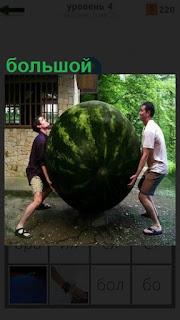 Около дома двое мужчин пытаются поднять огромный арбуз