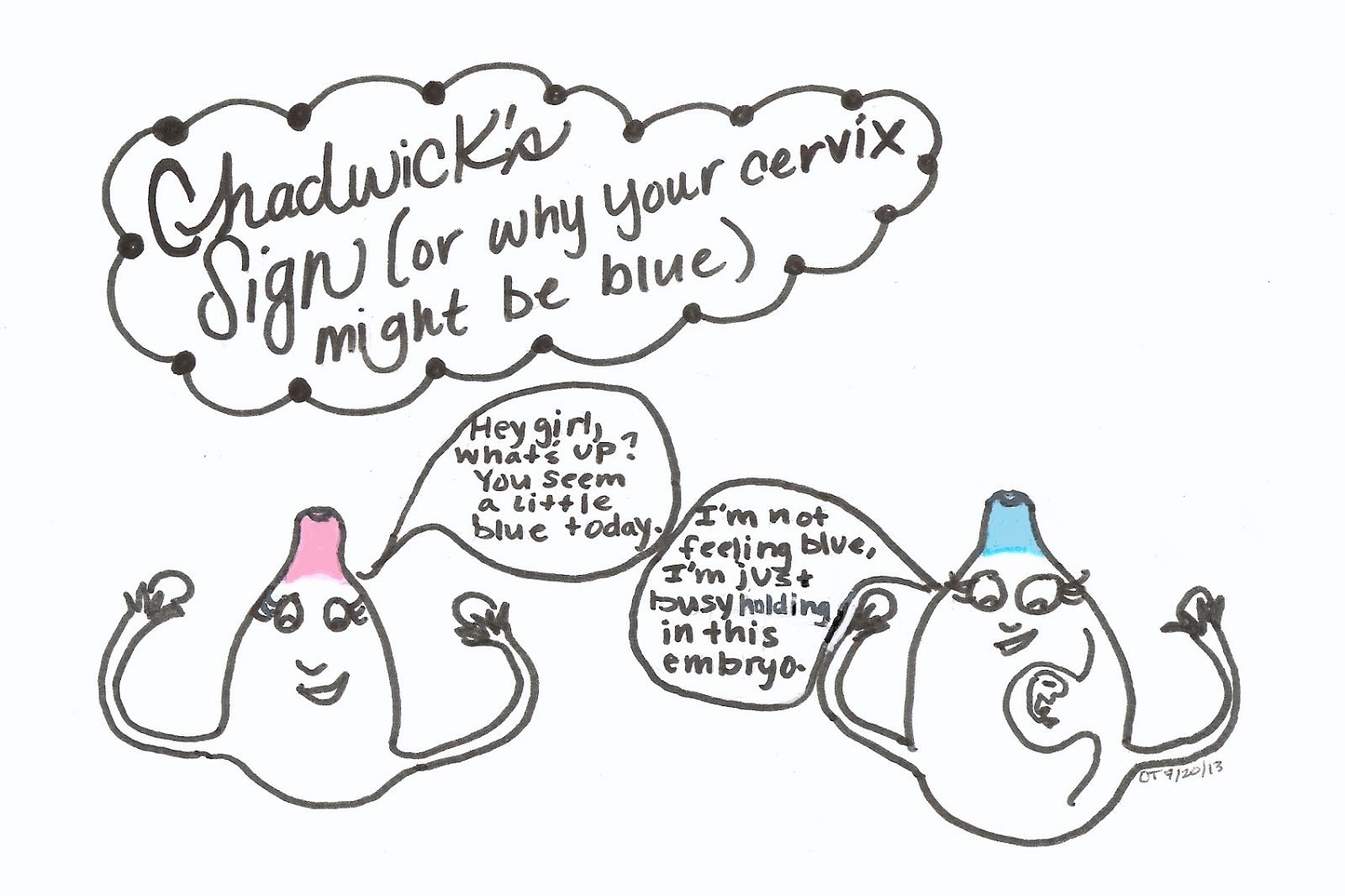 Your Graphic Health Chadwick S Sign Or Why Your Cervix
