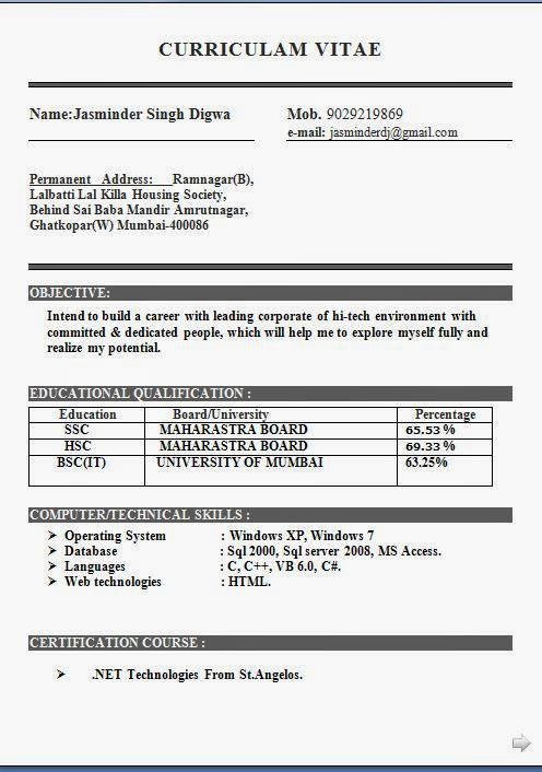 ... Resume Format For Bsc Computer Science Freshers Free Resume Format For  Freshers Bsc Computer Science Sle ...