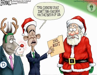 Image result for obama audits cartoons