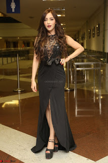Angela Krislinzki in Transparent Black Gown at Rogue Movie Teaser Launch 1st March 2017 046.JPG