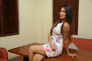 Nishi Ganda stunning cute in Flower Print short dress at Tick Tack Movie Press Meet March 2017 018.JPG