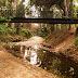 Μυστικό Χαλάνδρι: Ρέμα Πολυδρόσου ένας υδροβιότοπος στο κέντρο της πόλης