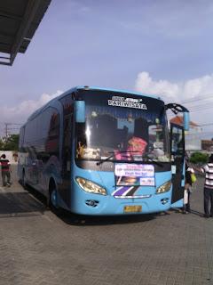 carter Bus Pariwisata PO. Iva Jaya Surabaya
