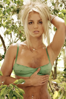 latest britney spears hot wallpapers 2012 521