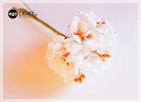 http://www.egocraft.pl/produkt/847-jedwabne-dwutonowe-kwiatki-kolor-bialy