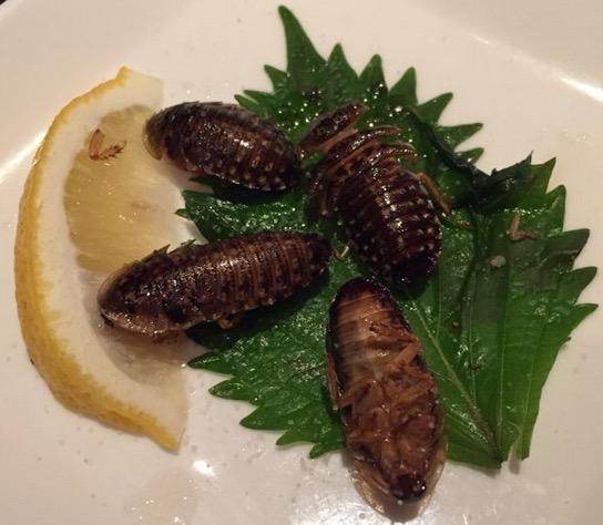 Jangan Terkejut Melihat Hidangan Pelik di Restoran Jepun
