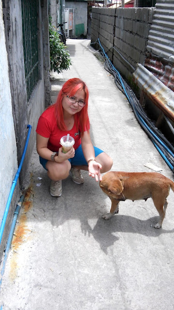 animal rescue philippines, animal welfare philippines,