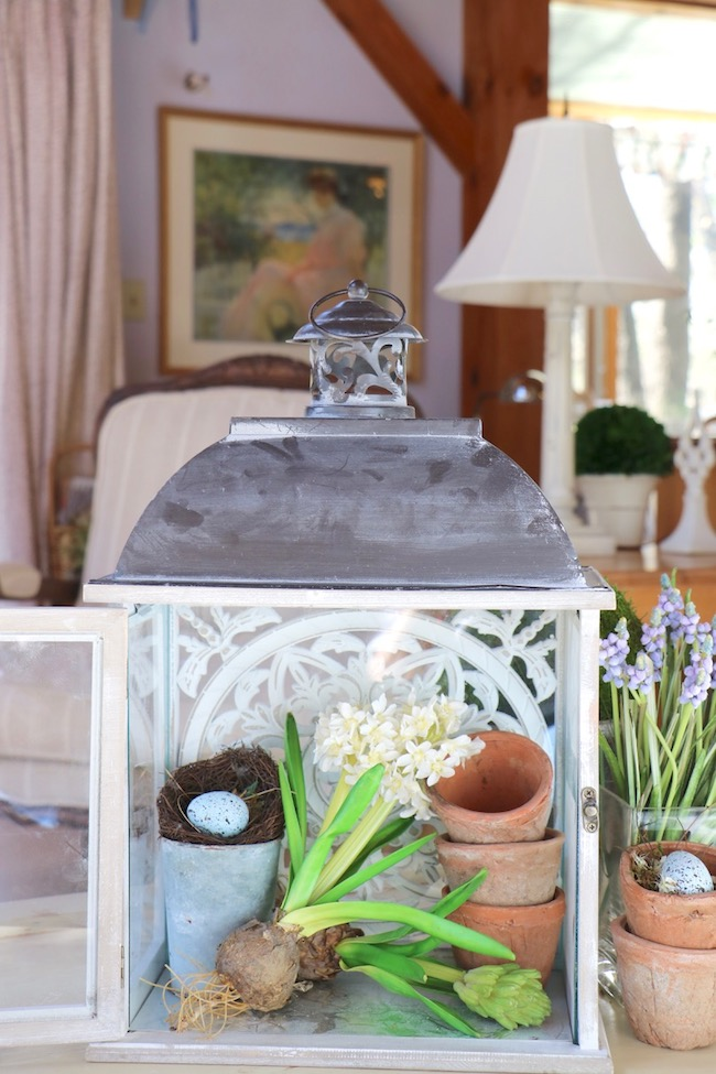 french country wood lantern Spring flowers and bird's nest