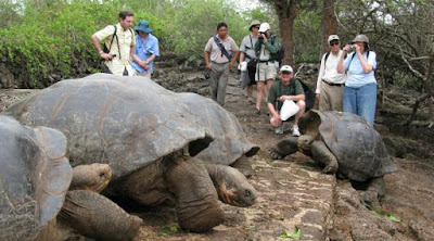 What are the options to visit Galapagos?