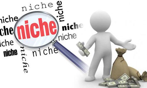 memilih niche dari website