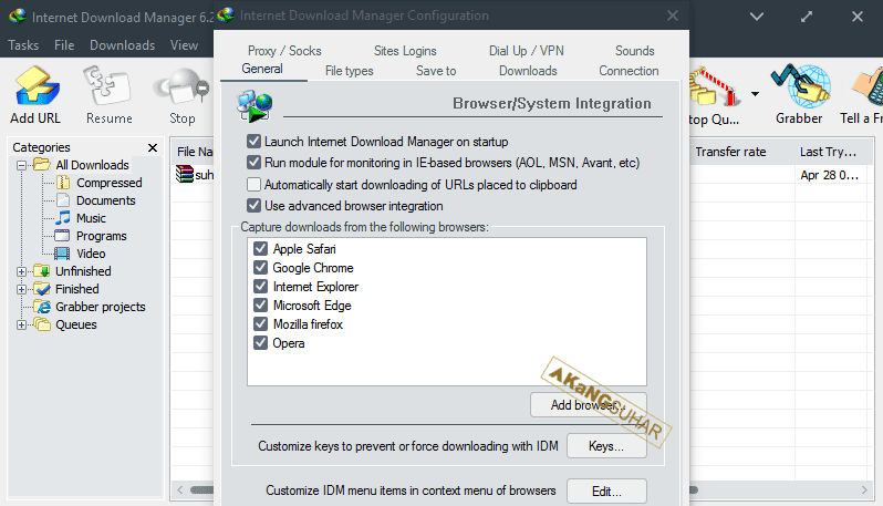 Internet Download Manager 6.33 Build 02 Terbaru
