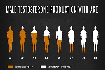 how to raise your testosterone levels