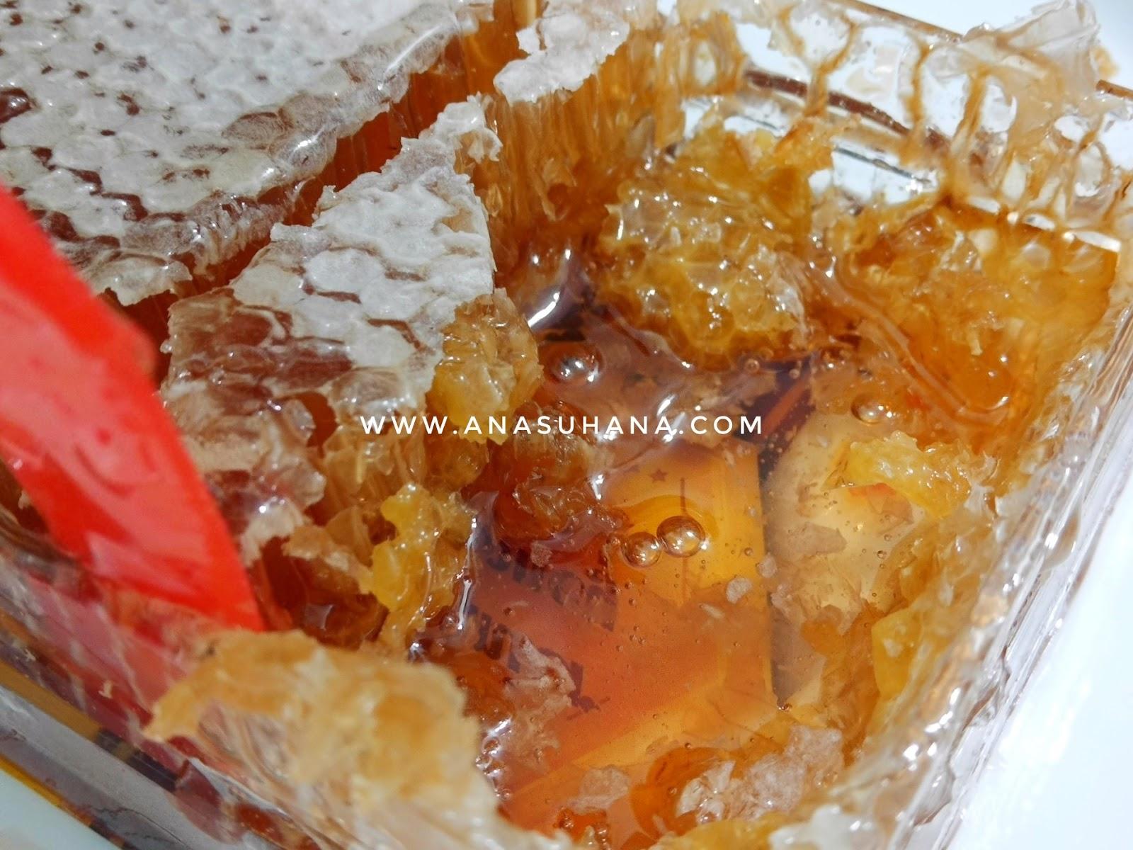 Sarang Madu Lebah Shuib Bee Factory