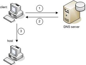 CARA KERJA DNS SERVER - Sheha || IT Knowledge