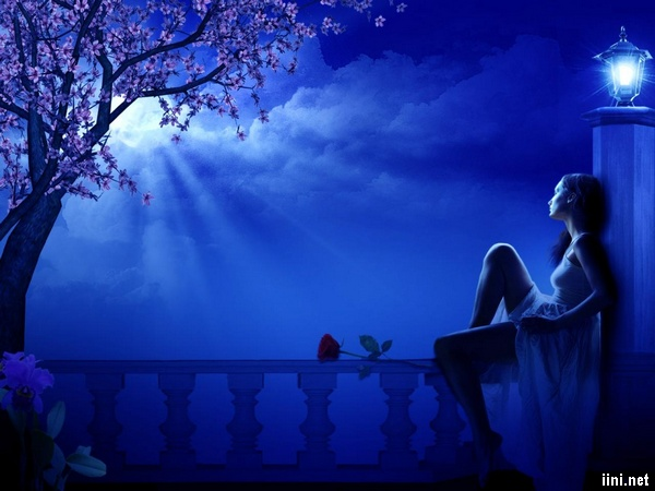 thơ 7 chữ viết về đêm