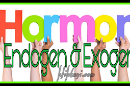Pengertian Hormon Endogen dan Exogen