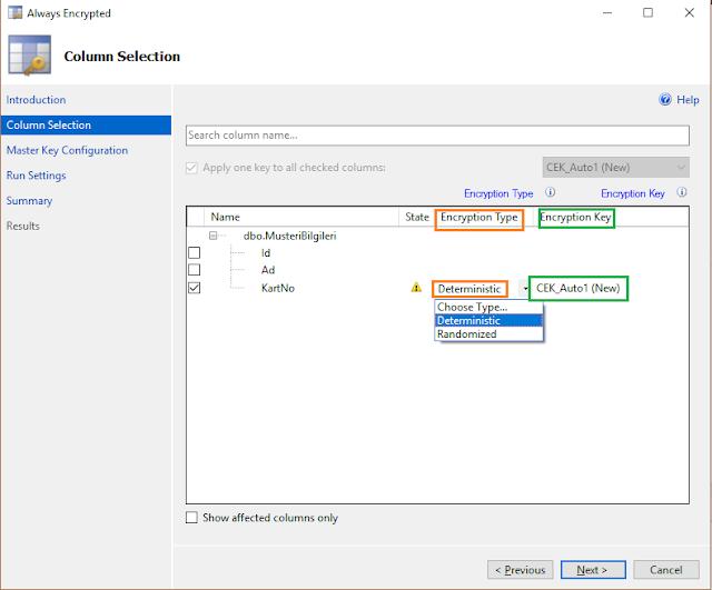 SQL Server 2016 Yenilikleri - Always Encrypted Wizard - Column Encryption Key