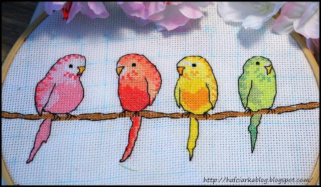 SAL z papużkami