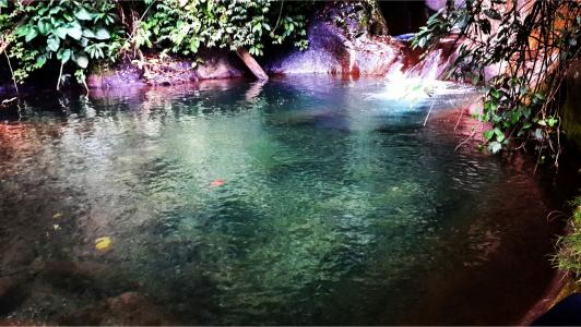 Curug Bidadari Desa Silurah Kecamatan Wonotunggal Kabupaten Batang