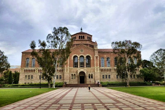 ucla università california