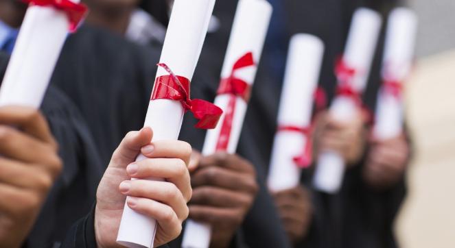 20 Best Courses to Study in School