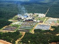 Perusahaan Perkebunan Kelapa Sawit Maret 2017 : Lowongan Kerja Riau