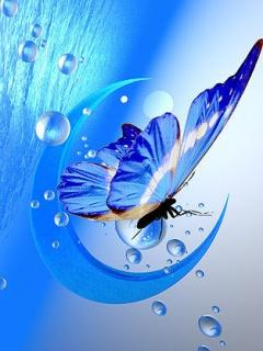 Blue butterfly butterfly abstract other hd desktop wallpaper - Water Drops Wallpapers For Mobile Phone