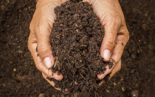 Albanian soils