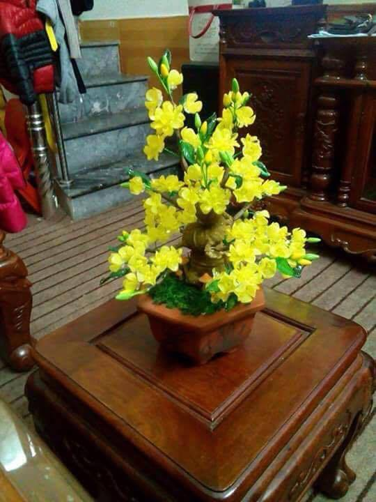 Goc bonsai mai dao o Dang Tran Con