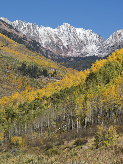 Autumn on Grand Traverse peak with colorful aspens in Vail Colorado