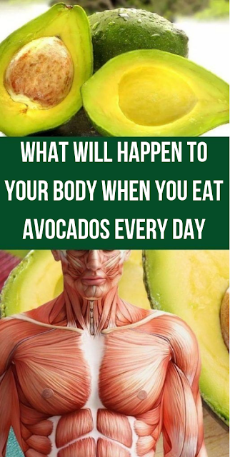 What Will Happen To Your Body When You Eat Avocados Every Day