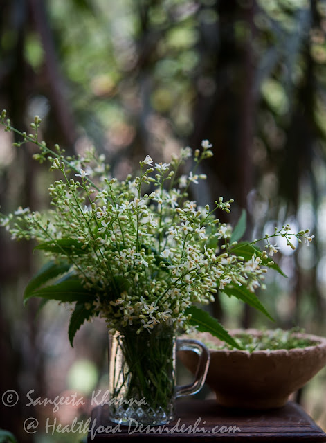 neem leaves and neem flowers