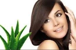 Tips Merawat Rambut Secara Alami di Rumah