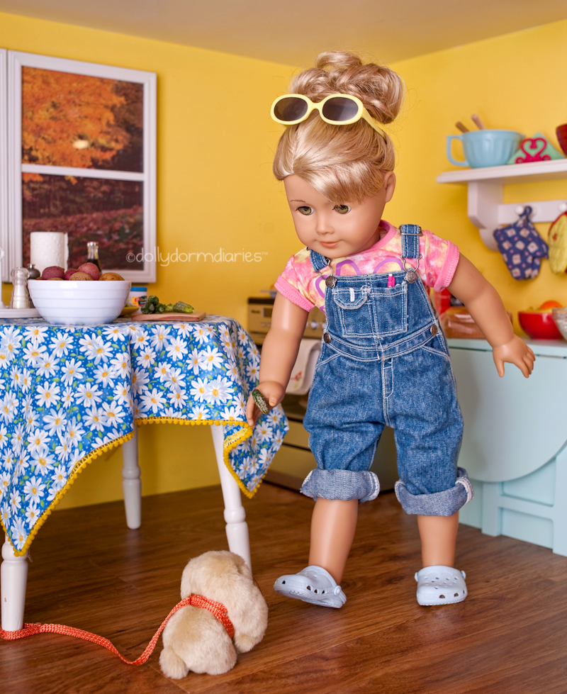 American Girl Doll Blog and Photo Stories