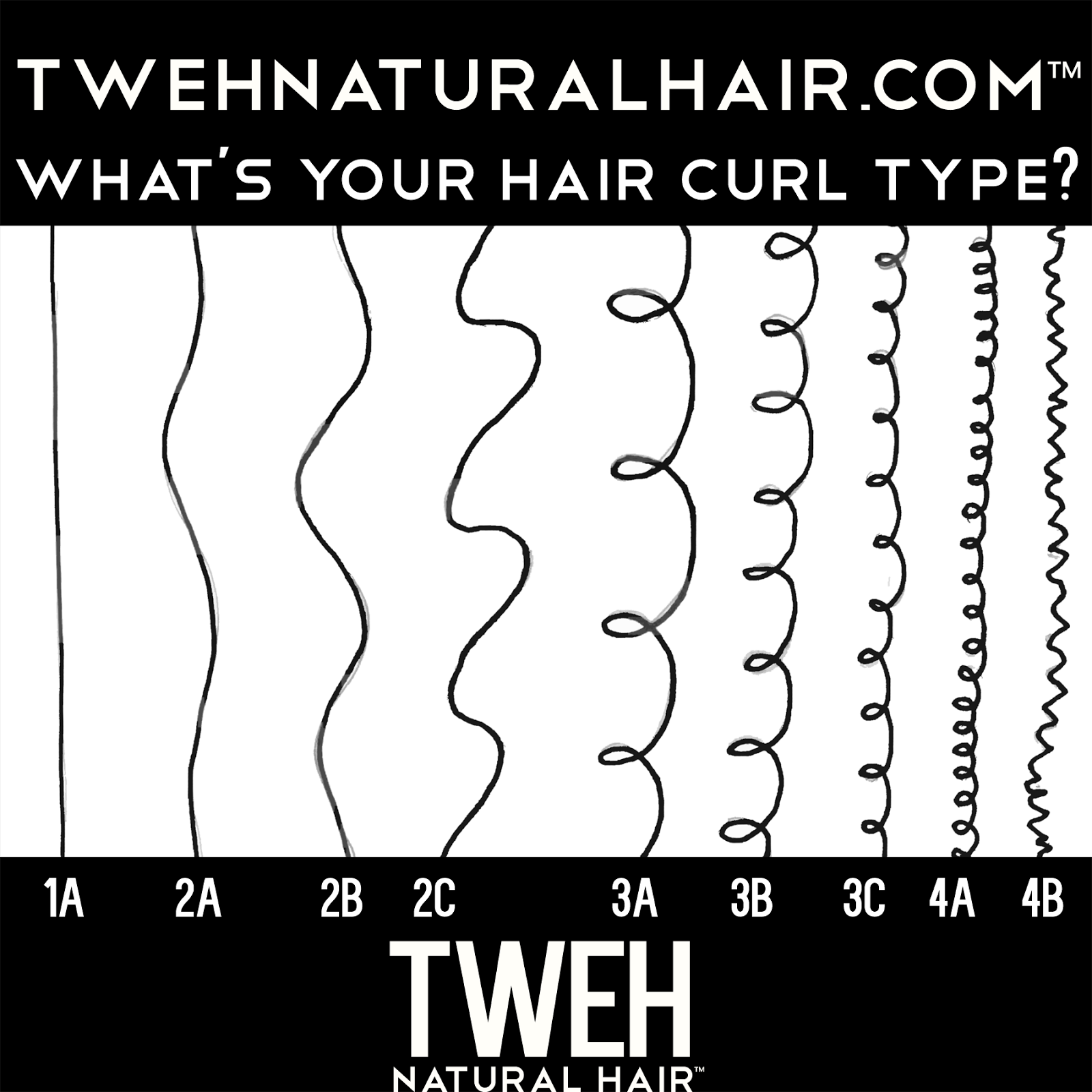Tweh Natural Hair: New Year's Resolution...Find Your Curl