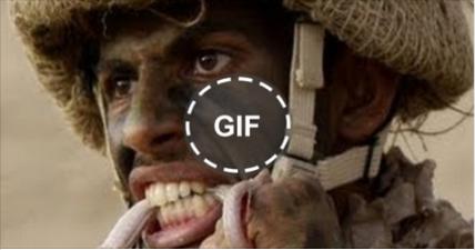 شاهد أقوى فيديو لتدريب الصاعقة المصرية على أكل الثعابين الحية شاهد كيف يفعلوها 💪😲