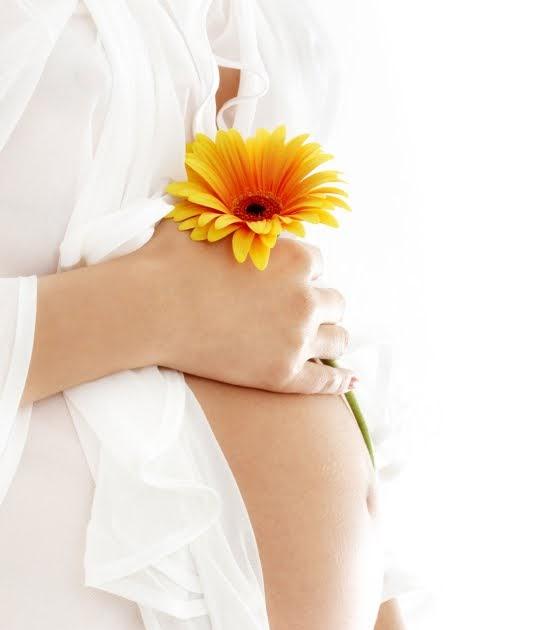 Kinderwunsch Ratgeber Fruchtbarkeit Frau: Wie Werde Ich Schnell Schwanger