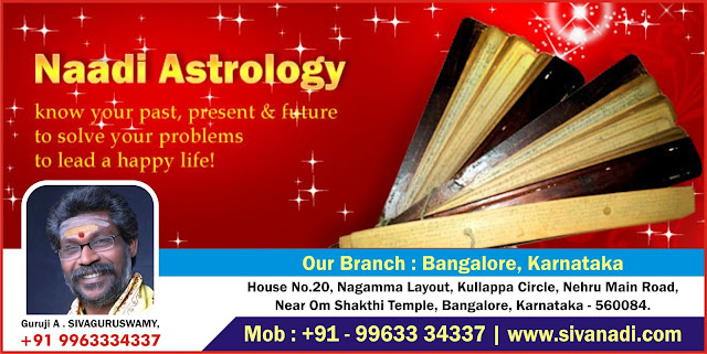 Popular Astrology, Popular Astrologer