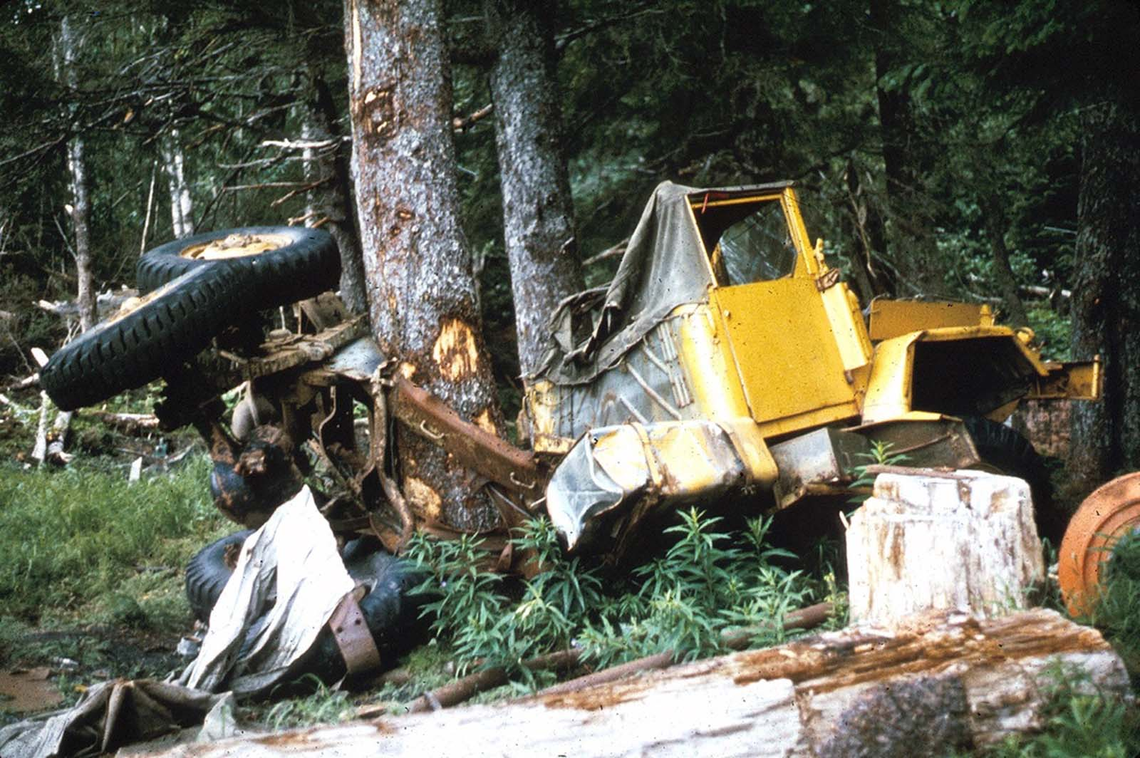 This truck was bent around a tree by the surge waves generated by the underwater landslides along the Seward waterfront. The truck was about 32 feet above water level at the time of the earthquake.