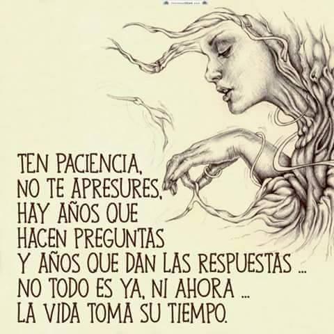 Ten paciencia, no te apresures, hay años que hacen preguntas y años que dan las respuestas, no todo es ya, ni ahora, la vida toma su tiempo.